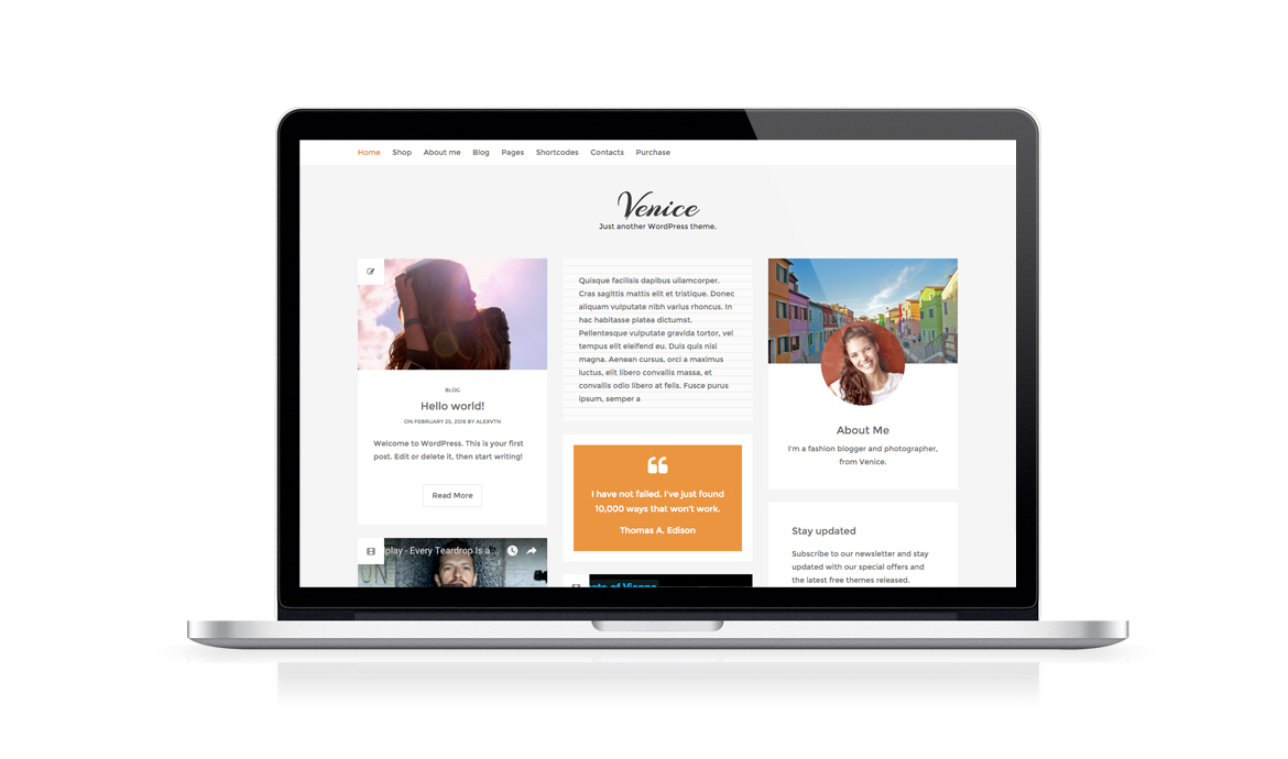 Venice Free Woocommerce Wordpress Blog Theme